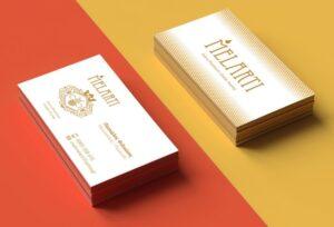 Σχεδιασμός Επαγγ. Κάρτας MELARTI